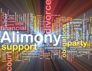Muskegon County Spousal Support Alimony Attorney Lawyer